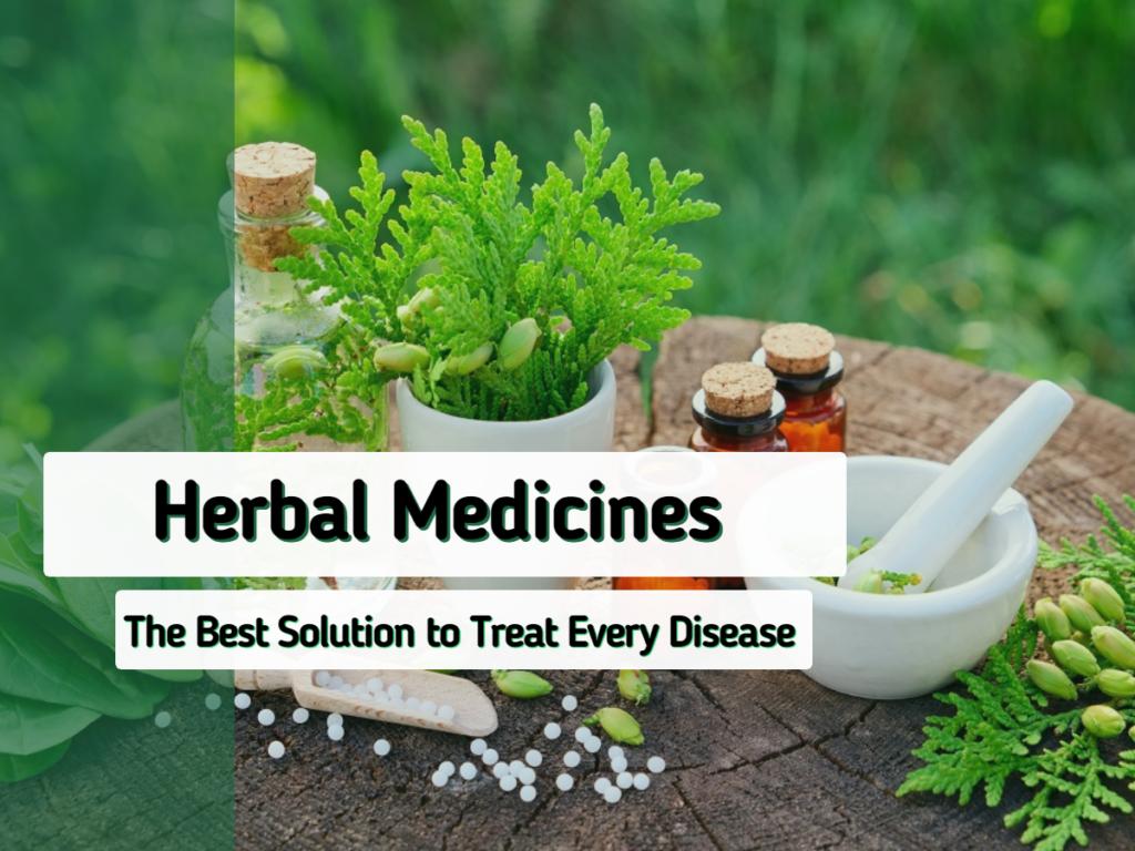 Herbal Medicines Benefits
