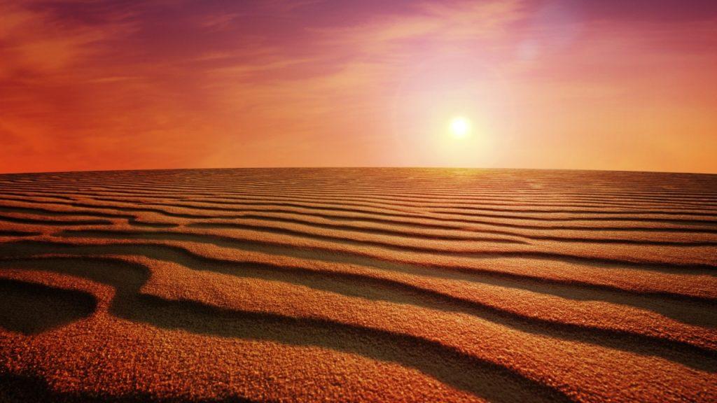 Enjoy the Sunset: