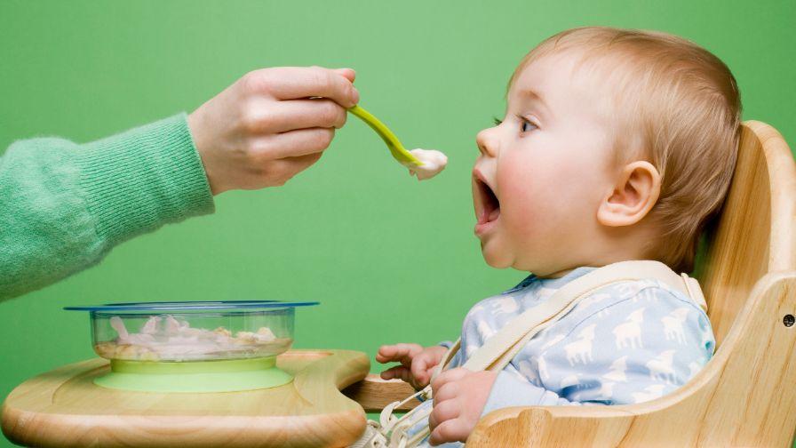 Snacks or Baby Food